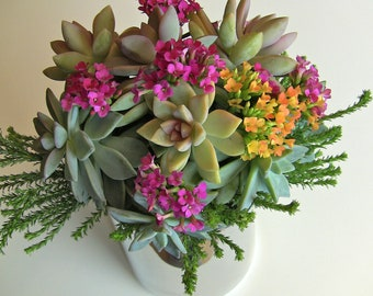 Succulent wedding bouquet, Bridal succulent bouquet, wedding bouquet.