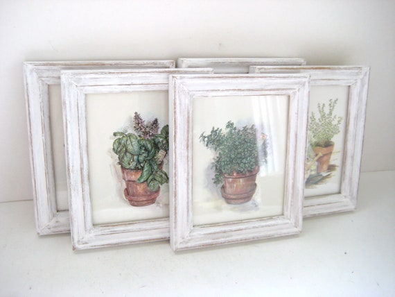 Kitchen Wall Decor Herb Prints Collection Of 5 Shabby