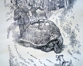 1930s LION TORTOISE ELEPHANT 3 Doublesided illustrations