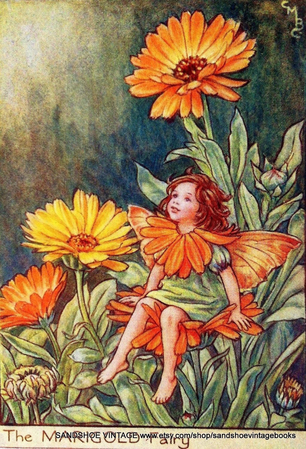 ON HOLD 1930s FAIRY Cicely Mary Barker Print Ideal for Framing
