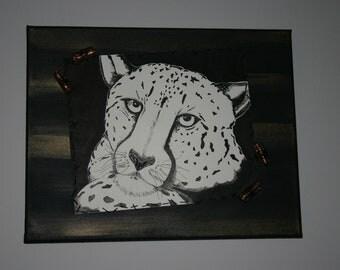 Calm Cheetah