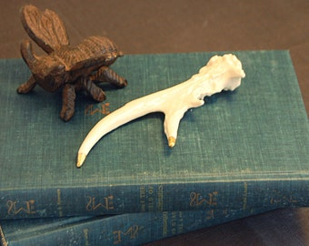 Porcelain Whitetail Deer Antler (clear, glazed body with gold tip)