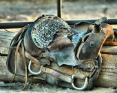 Old Horse Saddle for the Horse lover, fine art photography, horses, home decor,