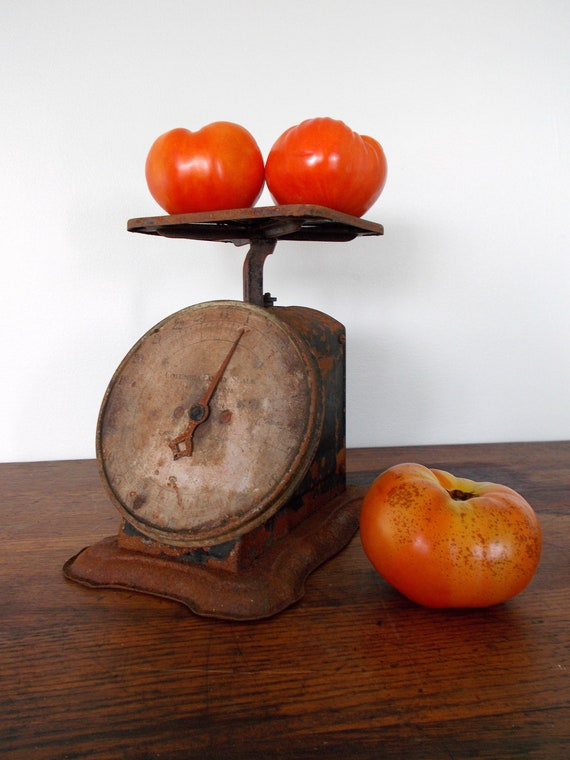 Rusty Antique Columbia Family  Scale