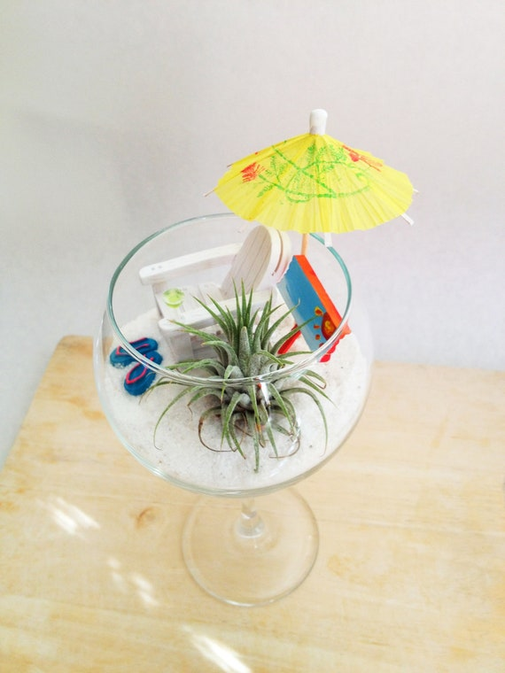 Items Similar To Miniature Beach Garden In A Wine Glass On