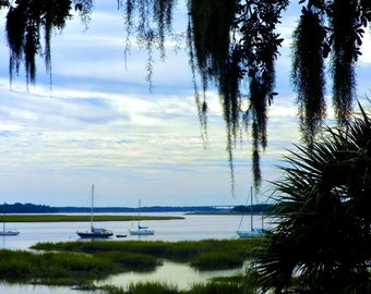 Travel Photography -Soft Blue and Green -By the Bay in Beaufort, South Carolina- Nature, Southern, Fine Art Photography