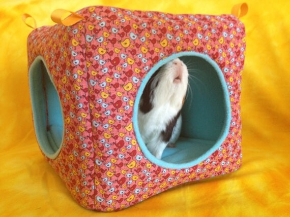Hipster Bird Cube/House with Turquoise Fleece  for Small Pets