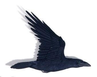 Blank Card - 'Passing' (detail of raven) - Paper Sculpture, Print