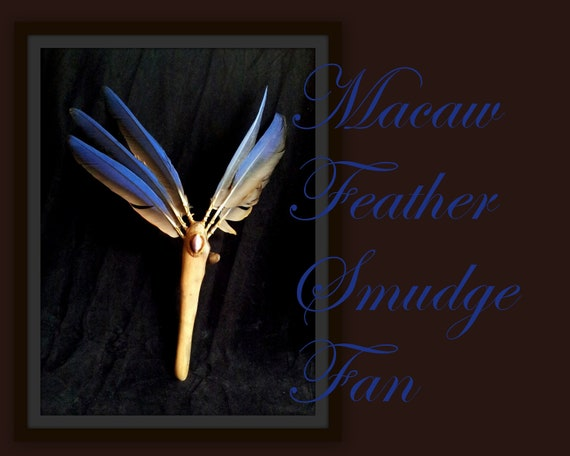Macaw Feather Smudge Fan - Driftwood Handle