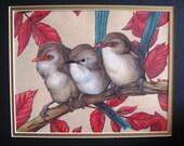 Three in a Tree - Original Drawing
