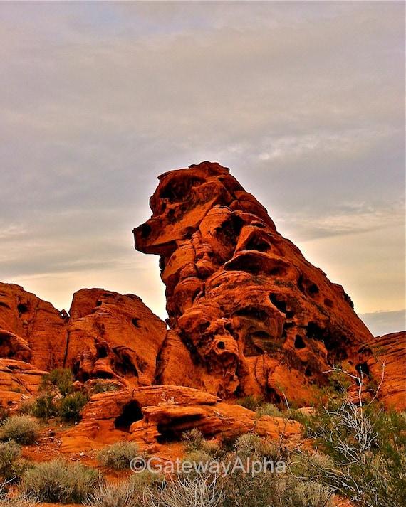 Guardian Dog Photo, Landscape Photography, Fine Art Photography, High Desert Photo, Nevada Photography, Desert Photograph