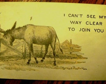 vintage postcards ... DONKEY COMIC See My Way Clear  .. POSTCARD . ..