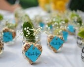 Heart Shaped Bird Seed Wedding Favors - Or any shape you have in mind