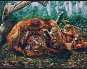 "The Babysitter 16"" x 11"" Orangutang family print"