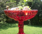 Vintage Red Depression Glass with Succulents
