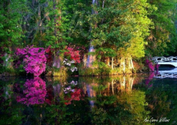Reflections on the Lake at Magnolia Gardens in South Carolina (canvas)
