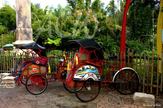 Red bicycles and rickshaw (PR) (canvas)