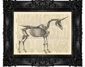 Unicorn Skeleton, Mythical Creature, Unicorn Horn, Anatomy Home Decor, Skull Art Gift, Dictionary Art Print, College Wall Decor 118
