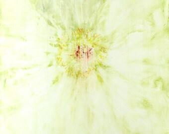 Giglee print, Garden flower 2. Wall art. Print of fine art painting.