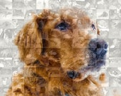 Golden Retriever Dog Custom Wall Art - Personalized Photo Collage Mosaic of Your Golden (8x10 or 10x10 inch)