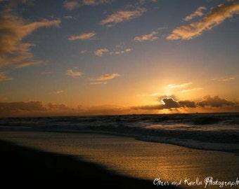 Gold Bluffs Beach 8x10 Photography Print