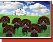 Thanksgiving Turkeys