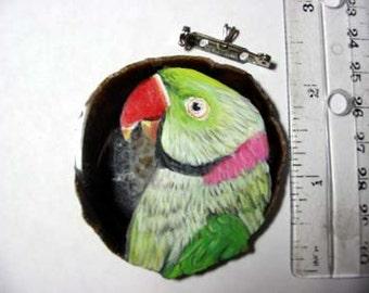 alexandrine parakeet pin/pendant on agate