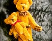 Big Bear & Little Bear Christmas Ornament