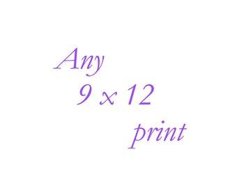 Any 9x12 Print - Your Choice