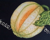 Still Life GARDEN CANTALOUPE  Lynne French Art 6 X 9 Original Watercolor Painting
