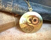 Vintage Locket Necklace - Bird Necklace - Owl Jewellery - Vintage Illustration - Elegant Metallic Irridescent Green Brown Copper