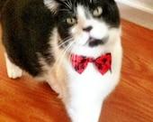 Cat Bow Tie Collar with Breakaway Buckle