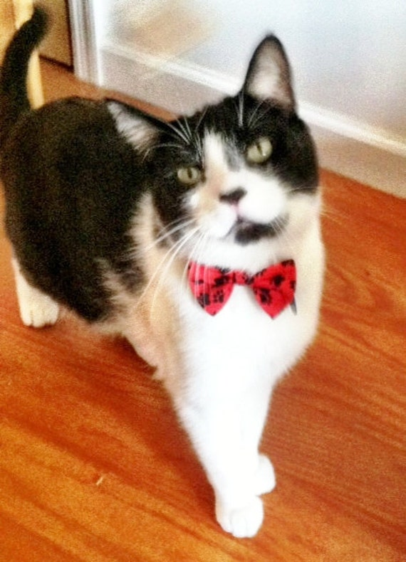 Cat Bow Tie Collar Red With Black Paw Print And Breakaway