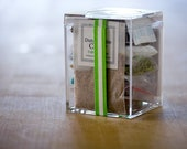 Tiny Lil' Square Terrarium Kit for Your Terrarium Collection - Shipped Overnight for Christmas!