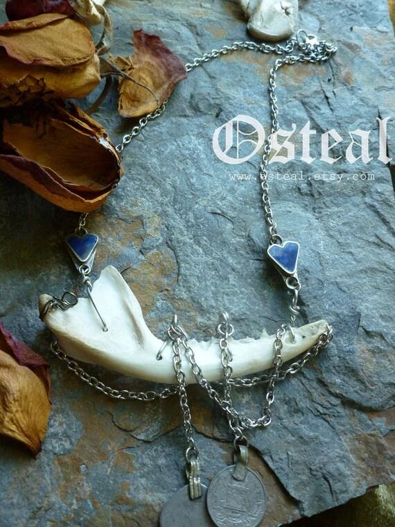 Vadoma - jawbone with lapis and kuchi coins bone jewelry