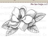 Magnolia - Vintage Florals - Digital Art Stamp (3 images)