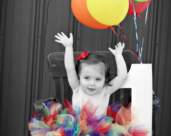 True Rainbow Tutu Great for birthdays, photos and much more