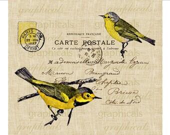 Yellow bird instant clip art Paris Carte Postale graphic Digital download image for iron on transfer burlap decoupage pillows cards No. 668