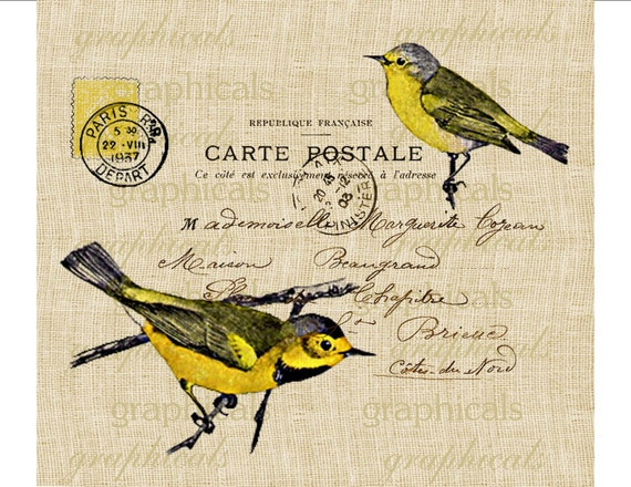 Yellow bird instant clip art Paris Carte Postale graphic Digital download image for iron on transfer burlap decoupage pillows cards No. 668
