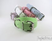 "Mint Pastel Green 1"" Beta Biothane Dog Collar - Leather Look and Feel - Adjustable Custom Size - DogWalkies"