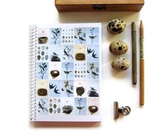 Birds Eggs and Nests A6 Small Spiral Notebook, Back to School Sketchbook Blank Writing Spiral Bound Journal Diary Baby Shower Gift Under 15