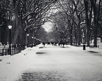 Black and White New York City Print - Winter Home Decor - Central Park Photography - Snow Trees - Literary Walk Photograph Landscape