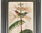Hummingbird wall art print on dictionary or music page Pink flower COUPON Dictionary art print Sheet music Digital print Home decor. No. 411