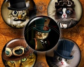 Steampunk Cat - 20mm, 18mm, 16mm, 14mm, 12mm circles - Digital Collage Sheets CG-556 - craft supplies, jewelry making, digital downloads