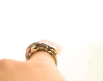 Tyrannosaurus Rex Ring