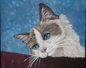 Ragdoll cat Portrait Canvas Original Painting OOAK