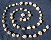 Spiral of Life Shell Beads 47