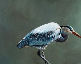 A Sudden Point Of Convergence 18 x 24 Art Print - Bird - Blue Heron - Animal - Nature - Gift - Artwork - Mincing Mockingbird