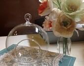 SALE -  6 Glass Orbs for terrariums