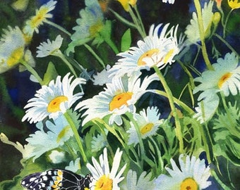 Butterfly Art Flower Daisy Daisies Print or Giclee Floral Art watercolor painting
